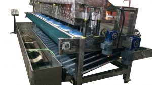 Flatbed Rug Washer With Press Wringer RWM157